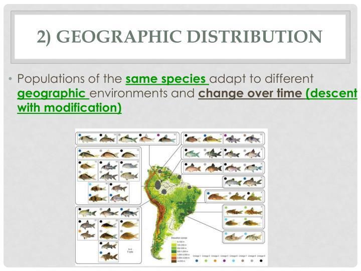 2) Geographic Distribution