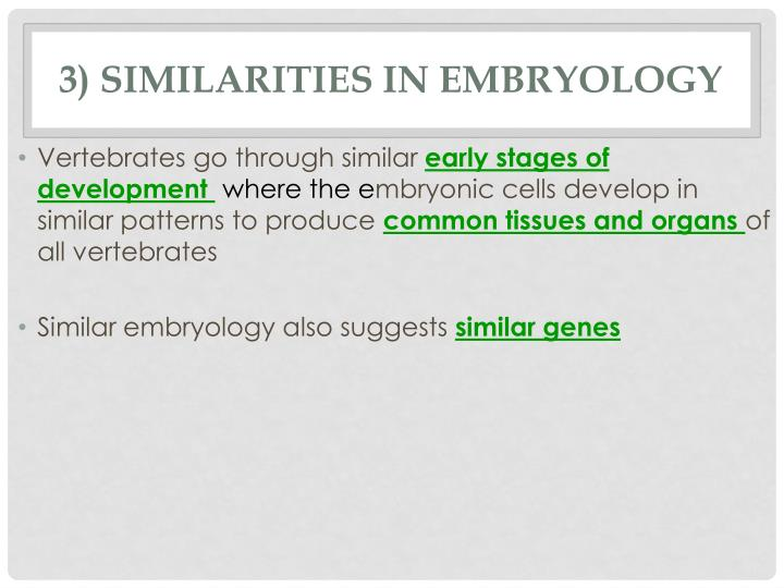 3) Similarities in Embryology