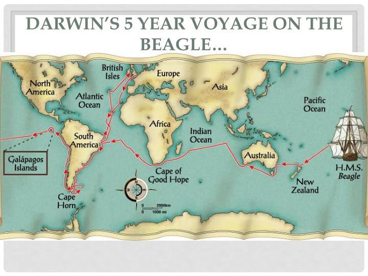 Darwin's 5 year voyage on the Beagle…