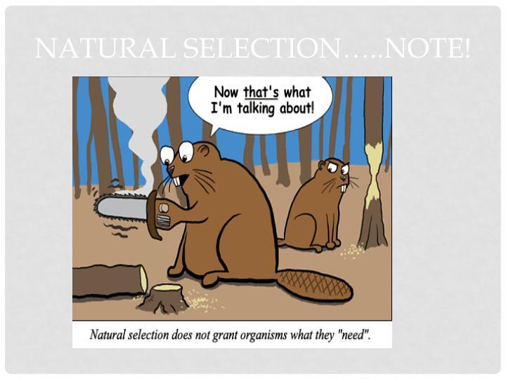 Natural selection…..NOTE!