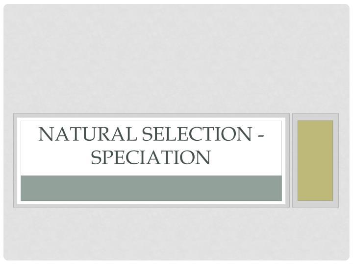 Natural Selection -