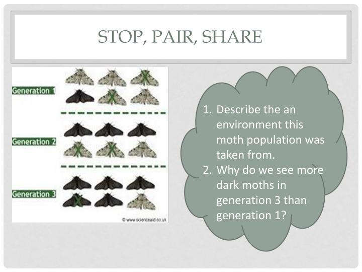 Stop, Pair, Share