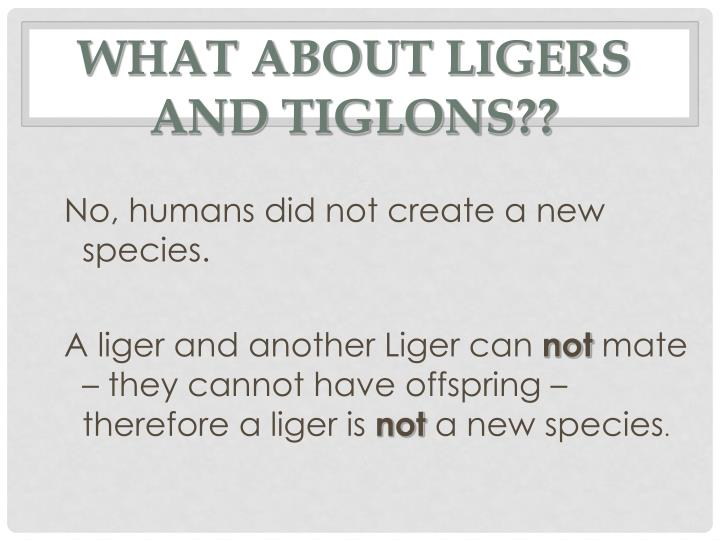 What about Ligers and Tiglons??