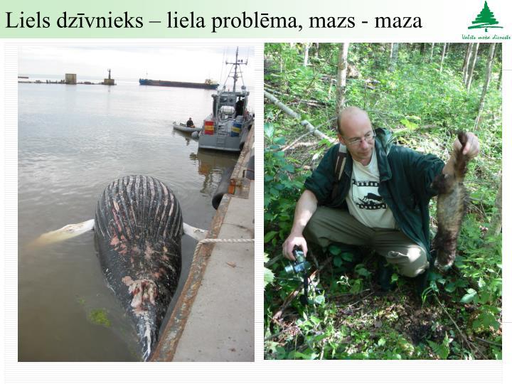 Liels dzīvnieks – liela problēma, mazs - maza