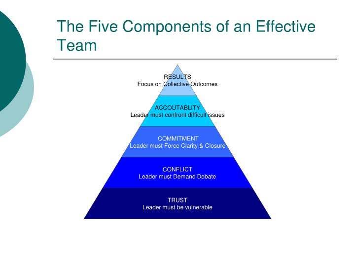 The Five Components of an Effective Team