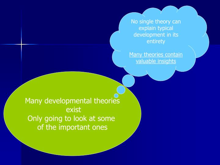 No single theory can explain typical development in its  entirety
