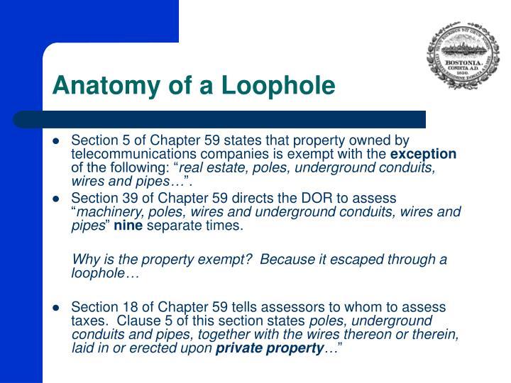 Anatomy of a Loophole