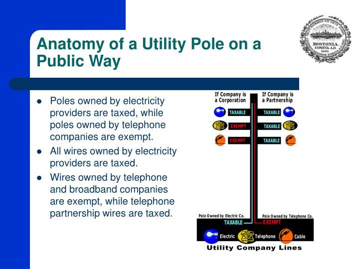 Anatomy of a Utility Pole on a Public Way