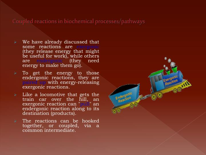 Coupled reactions in biochemical processes/pathways