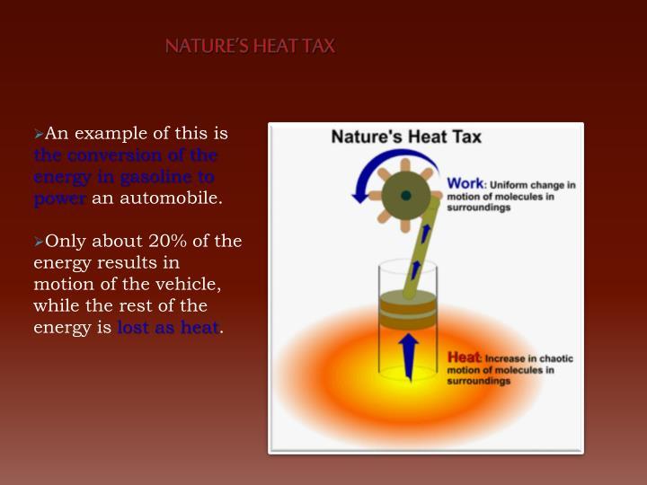 Nature's Heat Tax