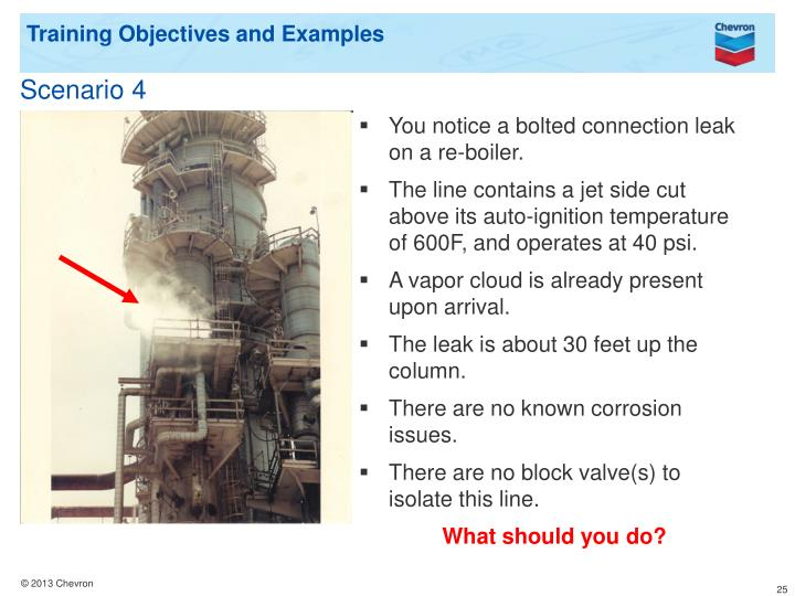 Training Objectives and Examples
