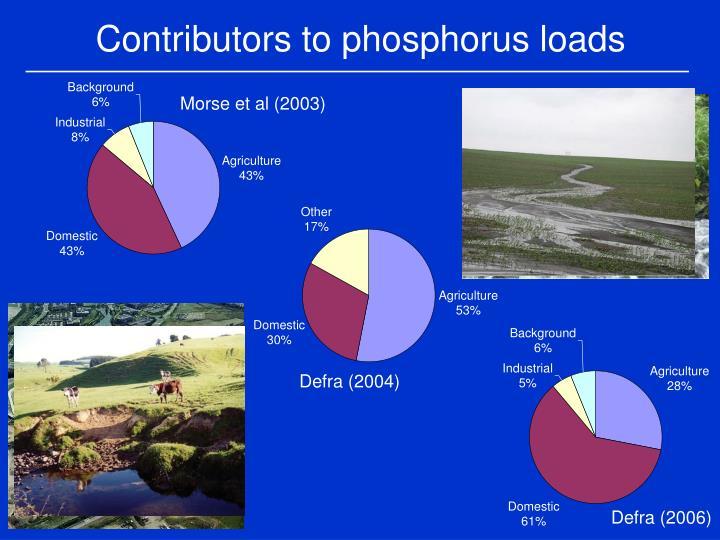 Contributors to phosphorus loads