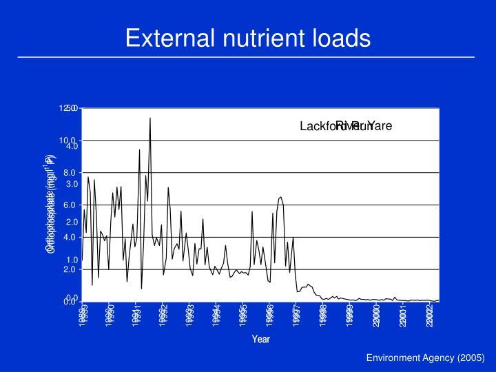 External nutrient loads