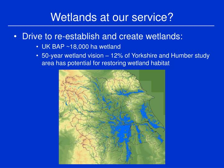 Wetlands at our service?