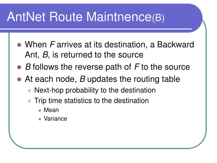 AntNet Route Maintnence