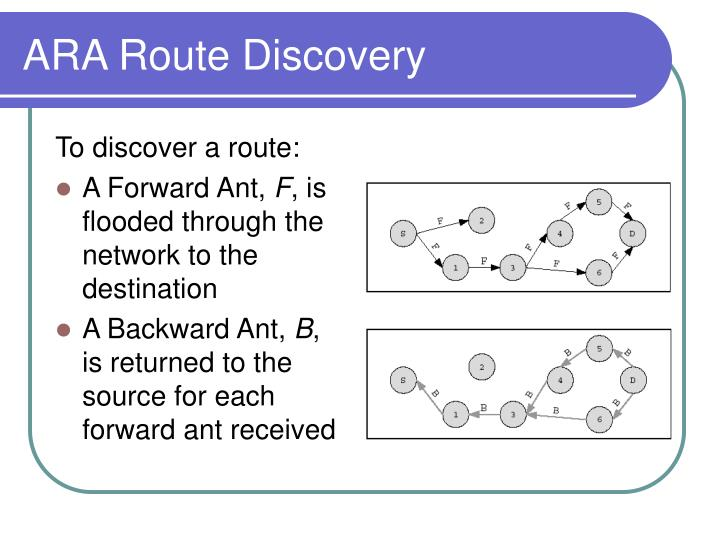 ARA Route Discovery