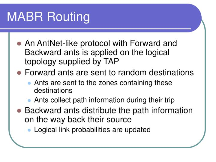 MABR Routing