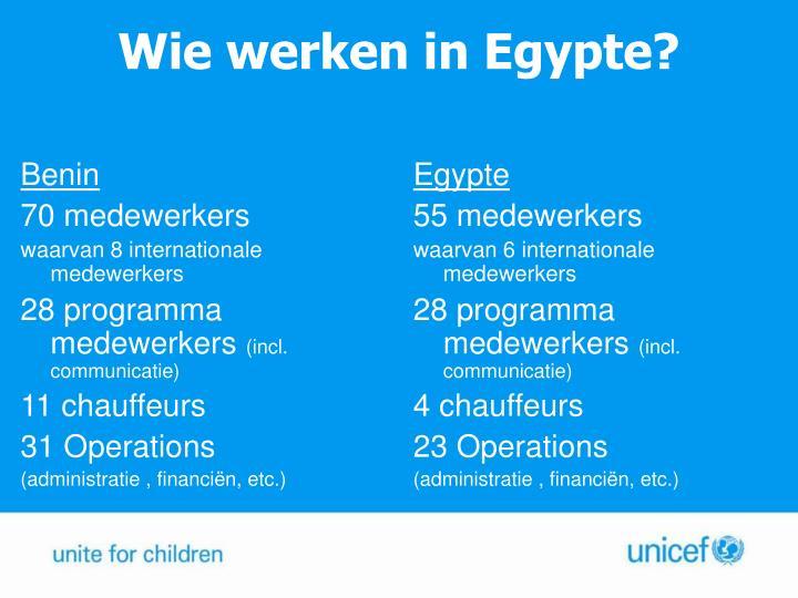 Wie werken in Egypte?