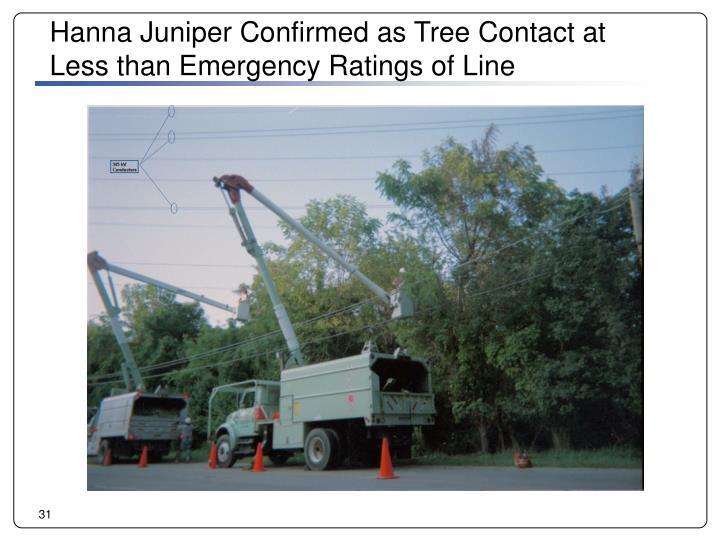 Hanna Juniper Confirmed as Tree Contact at
