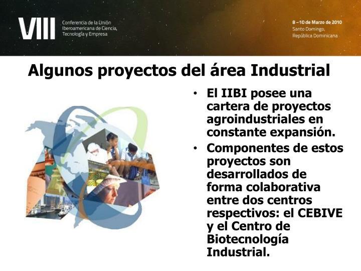 Algunos proyectos del área Industrial