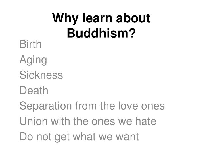 Why learn about Buddhism?