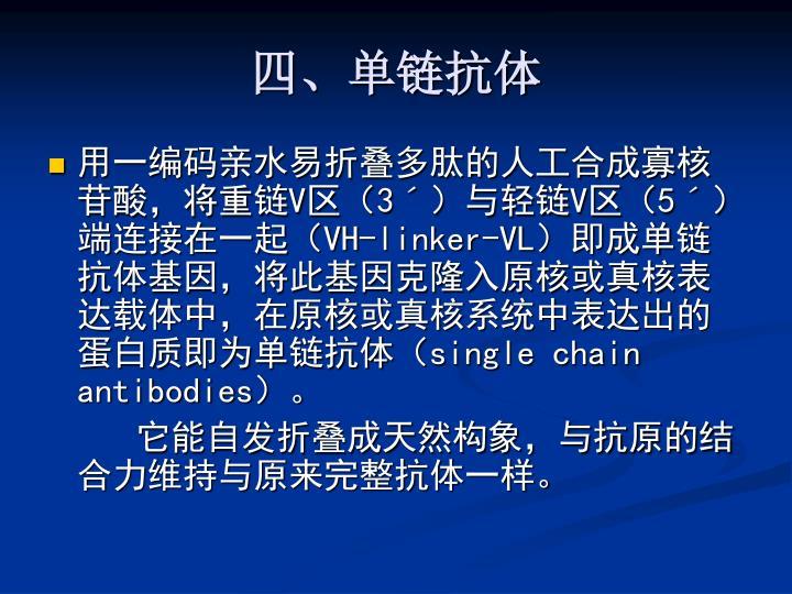 四、单链抗体
