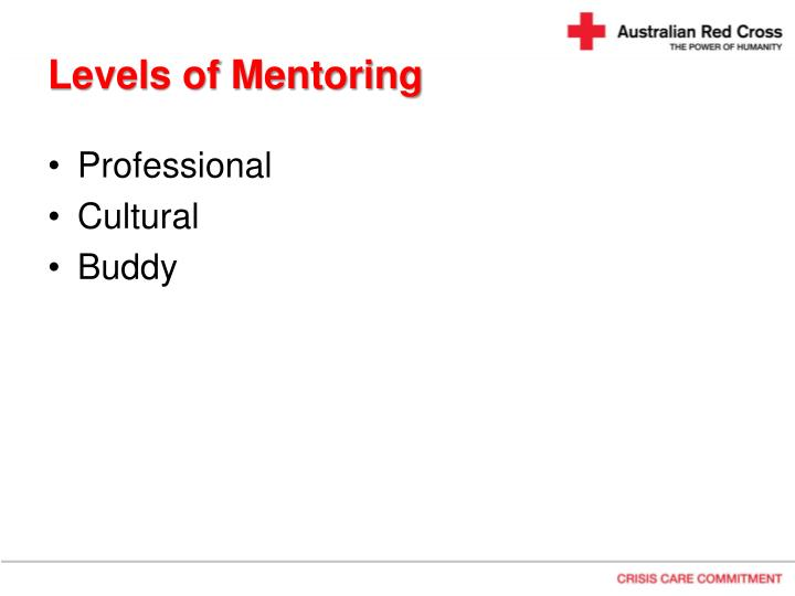 Levels of Mentoring