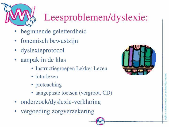Leesproblemen/dyslexie: