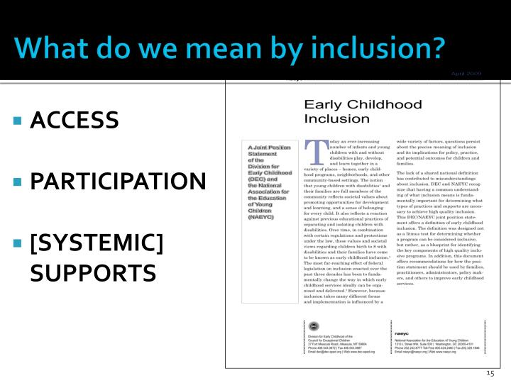 What do we mean by inclusion?