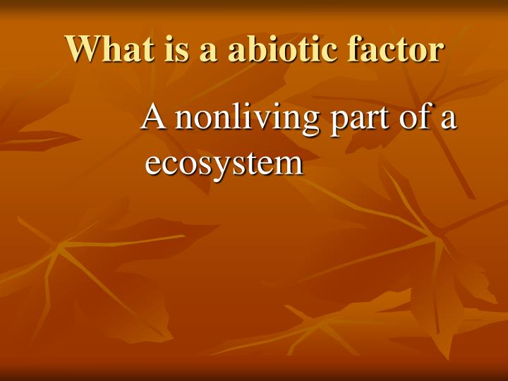 What is a abiotic factor