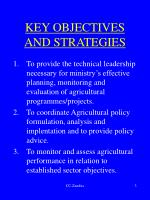 key objectives and strategies
