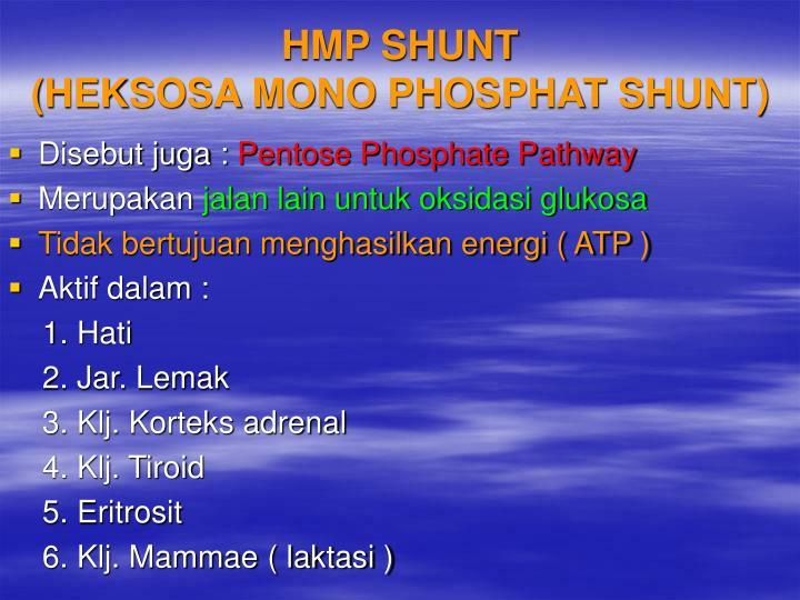 HMP SHUNT