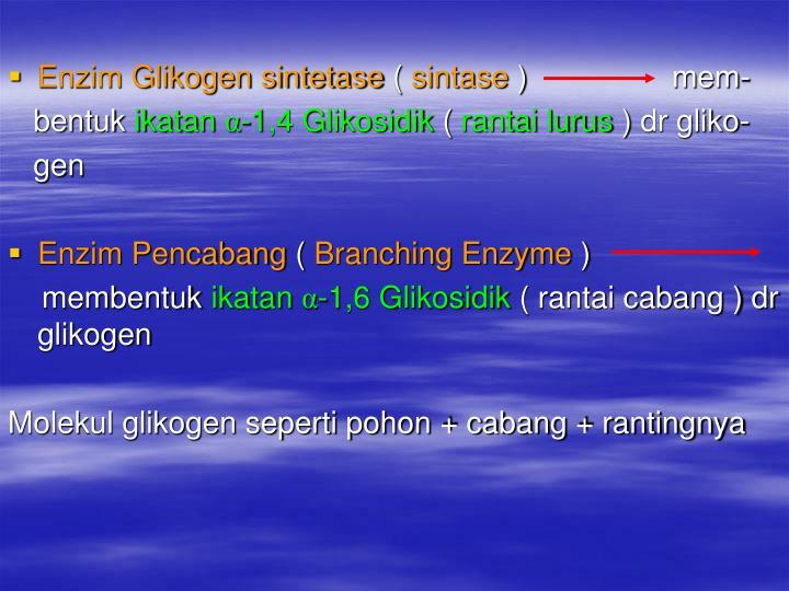 Enzim Glikogen sintetase