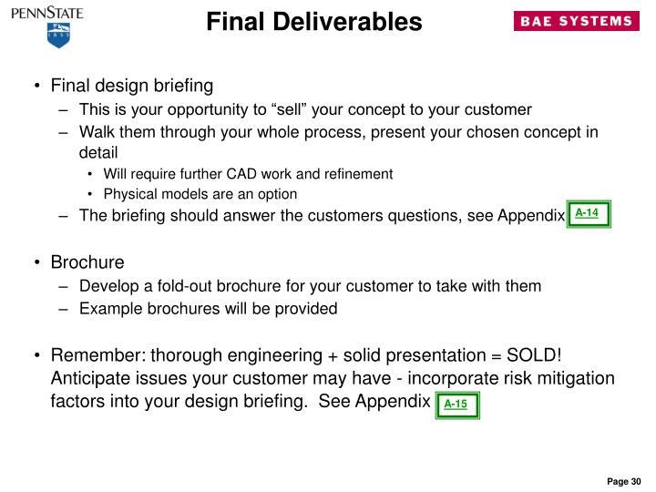 Final Deliverables