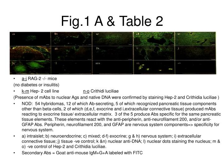 Fig.1 A & Table 2