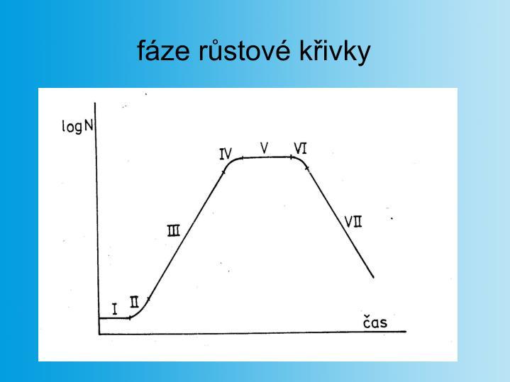 fáze růstové křivky