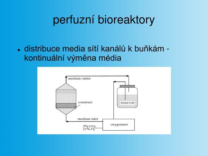perfuzní bioreaktory
