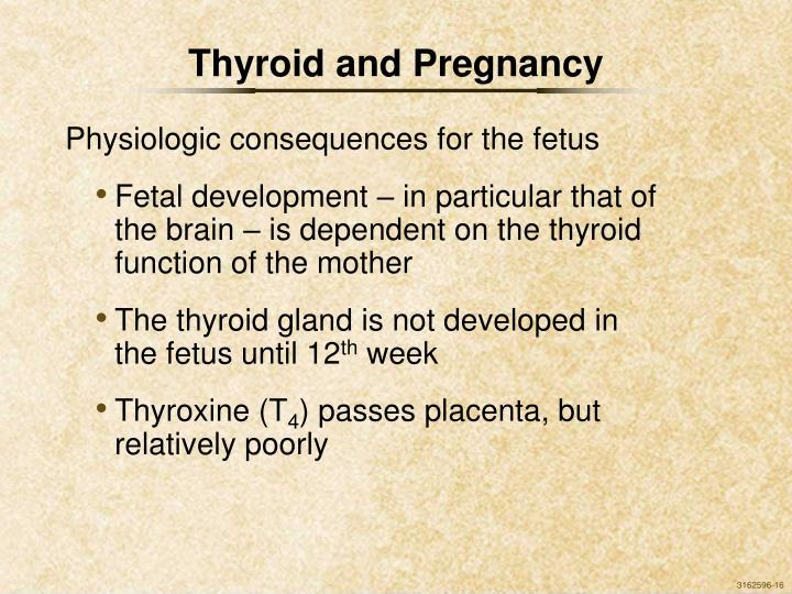 Thyroid and Pregnancy