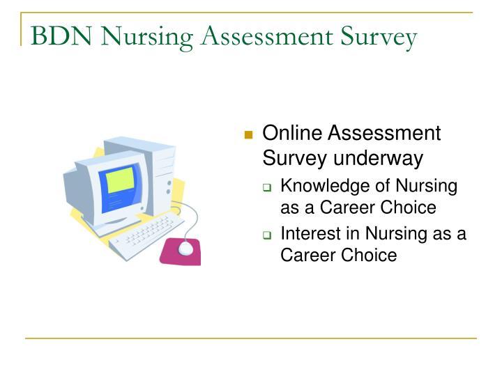 BDN Nursing Assessment Survey