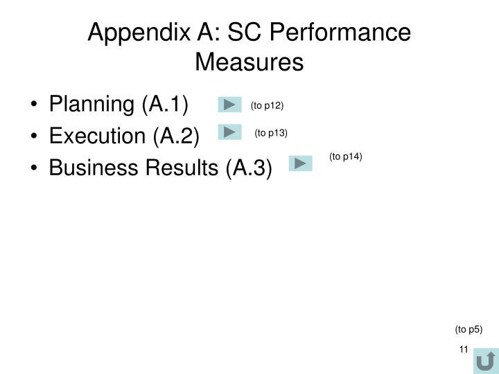 Appendix A: SC Performance Measures