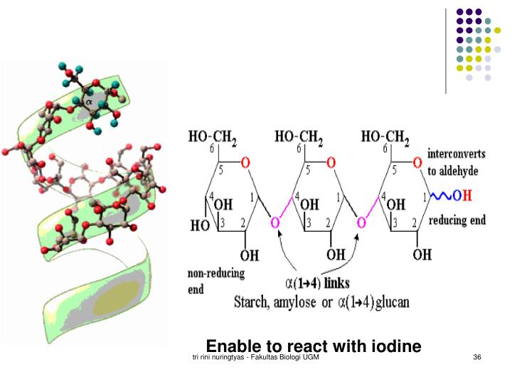 Enable to react with iodine