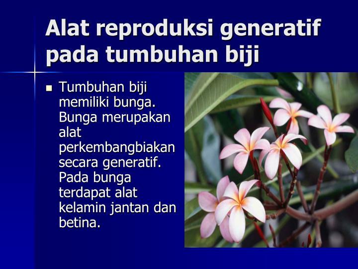 Alat reproduksi generatif pada tumbuhan biji