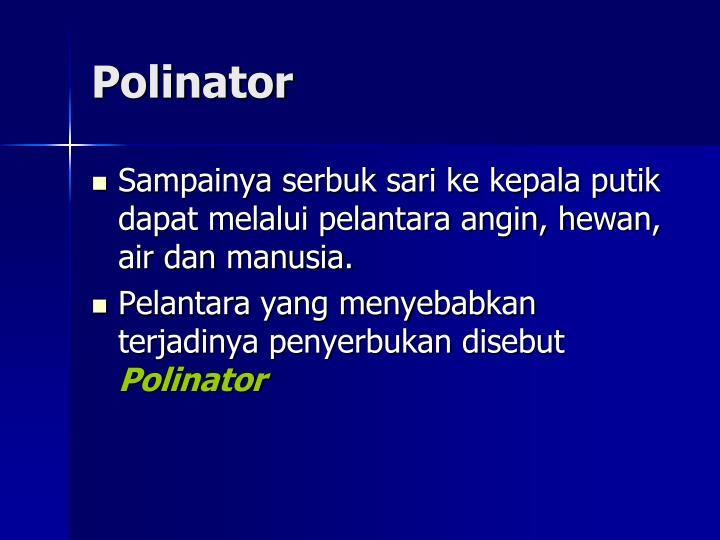 Polinator