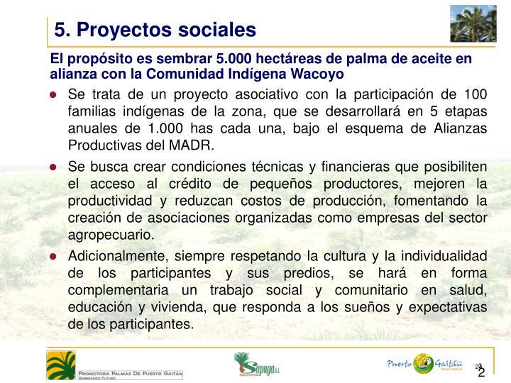 5. Proyectos sociales