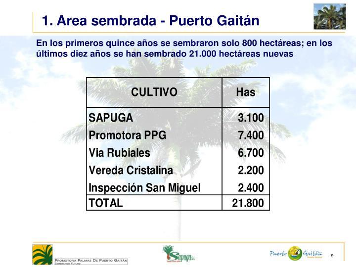 1. Area sembrada - Puerto Gaitán