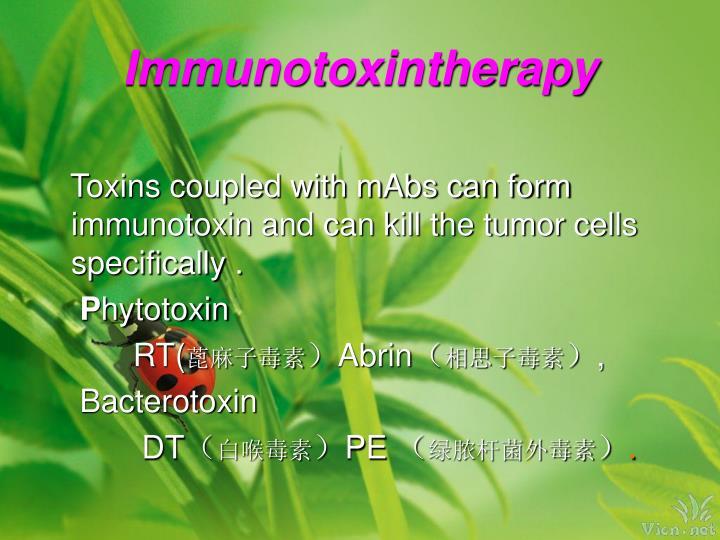 Immunotoxintherapy