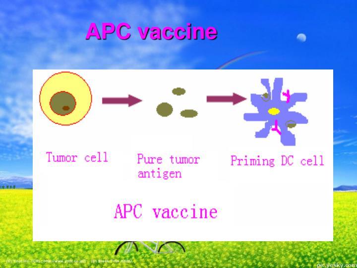 APC vaccine