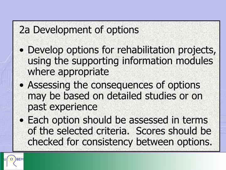 2a Development of options