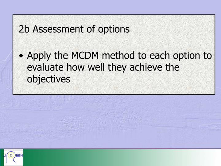 2b Assessment of options
