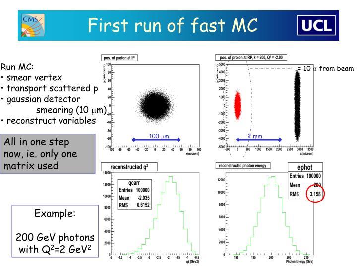 First run of fast MC